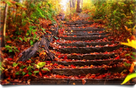 Fall Stairway
