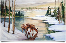 Winter Stream and Deer