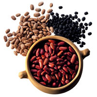 Beans and Other Legumes