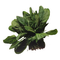 Spinach and Other Green Vegetables